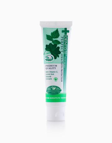 Dentiste' Nighttime Toothpaste (160g) by Dentiste