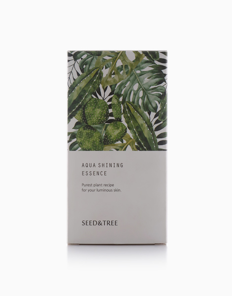 Aqua Shining Essence – Hyaluronic Acid Serum for Deep Moisturizing & Brightening by Seed & Tree