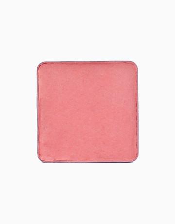 Multipurpose Pigment Refill by Ellana Mineral Cosmetics