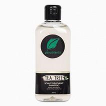 Tea Tree Shampoo by Zenutrients