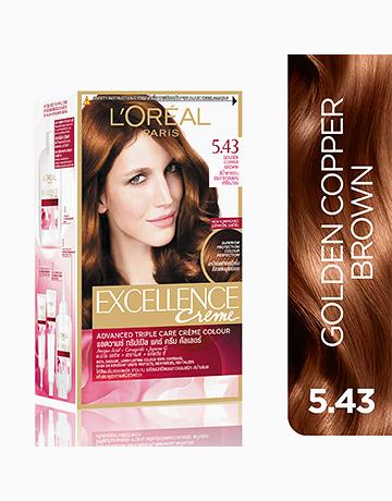 L'Oreal Paris Excellence Creme by L'Oréal Paris | No.5.43 Golden Copper Brown