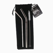Premium Combination Set :Reusable On-the-Go Stainless Steel Straw  by TRVLR