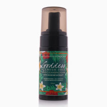 Blemish-Free Cleansing Foam by Abby's House Of Glycerin