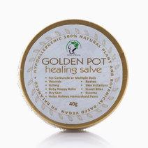 Golden Pot Healing Salve by Leiania House of Beauty