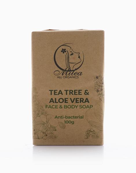 Tea Tree & Aloe Vera Soap (100g) by Milea