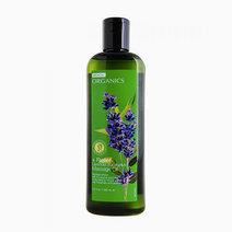 Bench 'organics   lavender eucalyptus massage oil'
