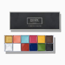 Imagic 12 flash color palette in