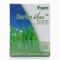 Barley Max NZ Food Supplement | Organic Barley Grass from New Zealand (10x3 grams) by Optimum Nutrition