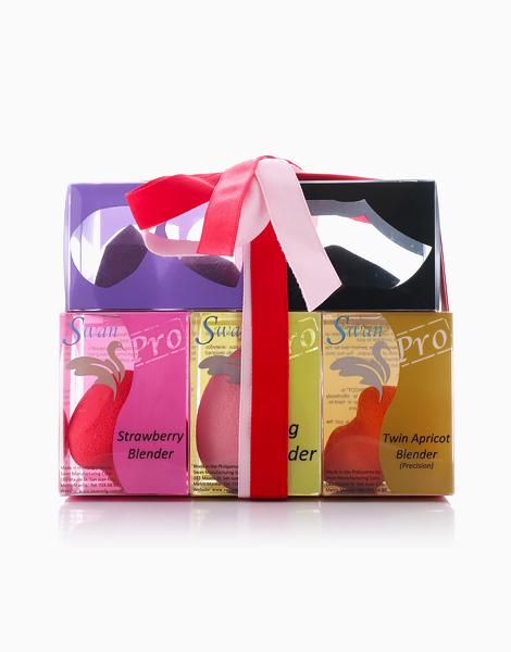 5 Blender Pack (Christmas Set) by Swan