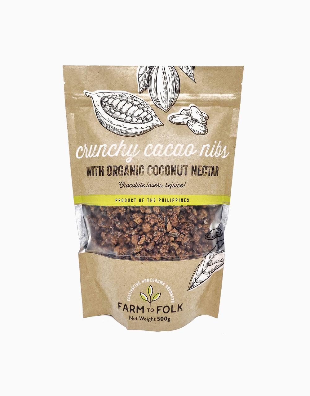 Crunchy Cacao Nibs with Organic Coconut Nectar (500g) by Farm to Folk
