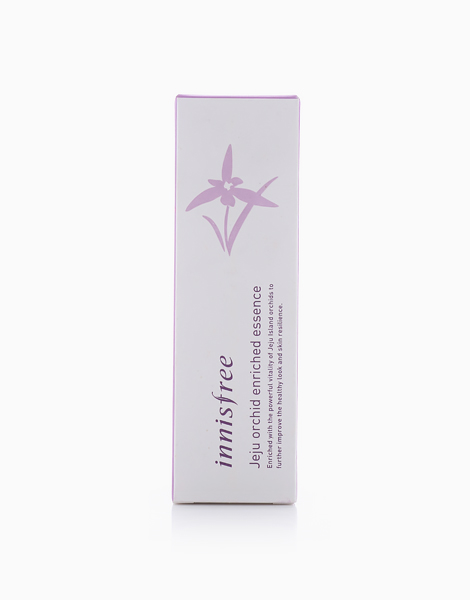 Jeju Orchid Enriched Essence (50ml) by Innisfree