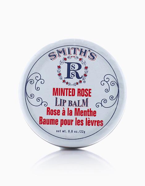 Smith's Minted Rose Salve by Smith's Rosebud Salve