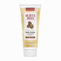 Bb fragrance free body lotion