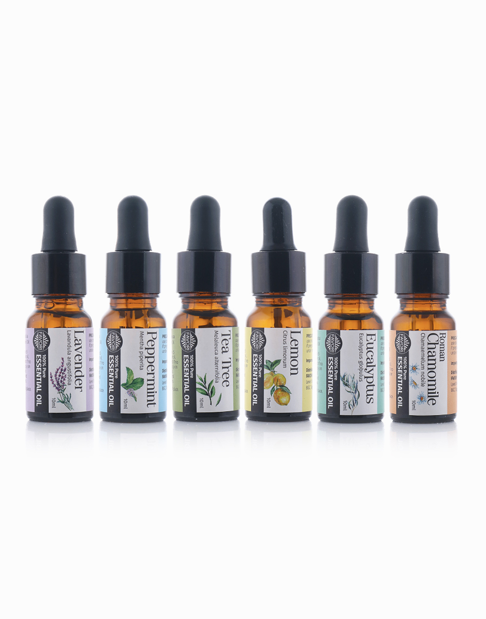 Complete Set of 6 (10ml x 6) by FAVORI