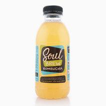 Soul brewkombucha