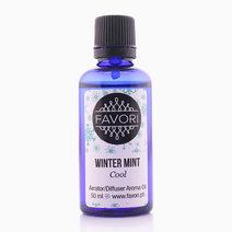 Winter Mint 50ml Aerator/Diffuser Aroma by FAVORI