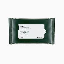 A pieu nonco tea tree toner tissue