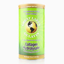 Collagen Hydrolysate (454g) by Great Lakes