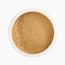 Radiant Loose Mineral Concealer and Foundation [with Jar] by Ellana Mineral Cosmetics