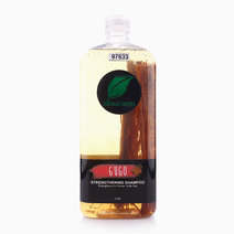 Gugo Strengthening Shampoo (1L) by Zenutrients