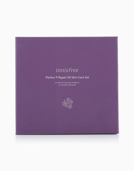 Perfect 9 Repair EX Skincare Set by Innisfree