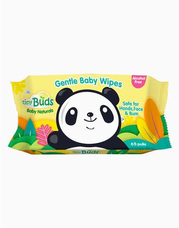Organic Baby Wipes (65s) by Tiny Buds