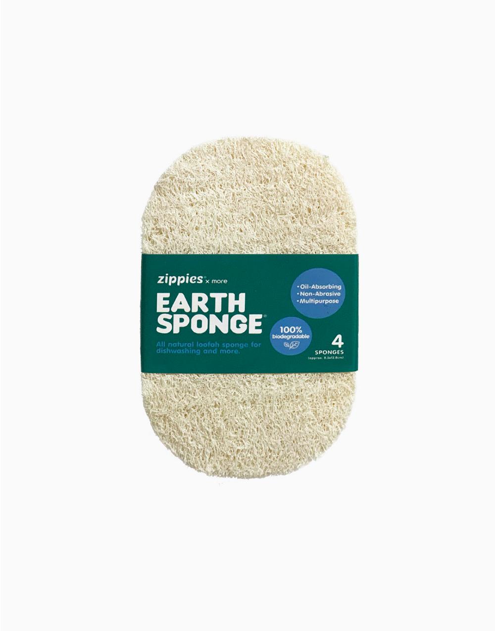 Earth Sponge by Zippies