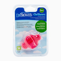 Dr brown teether orthees transition pink 2