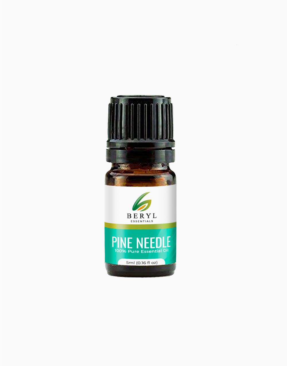 Pine Essential Oil (5ml) by Beryl Essentials