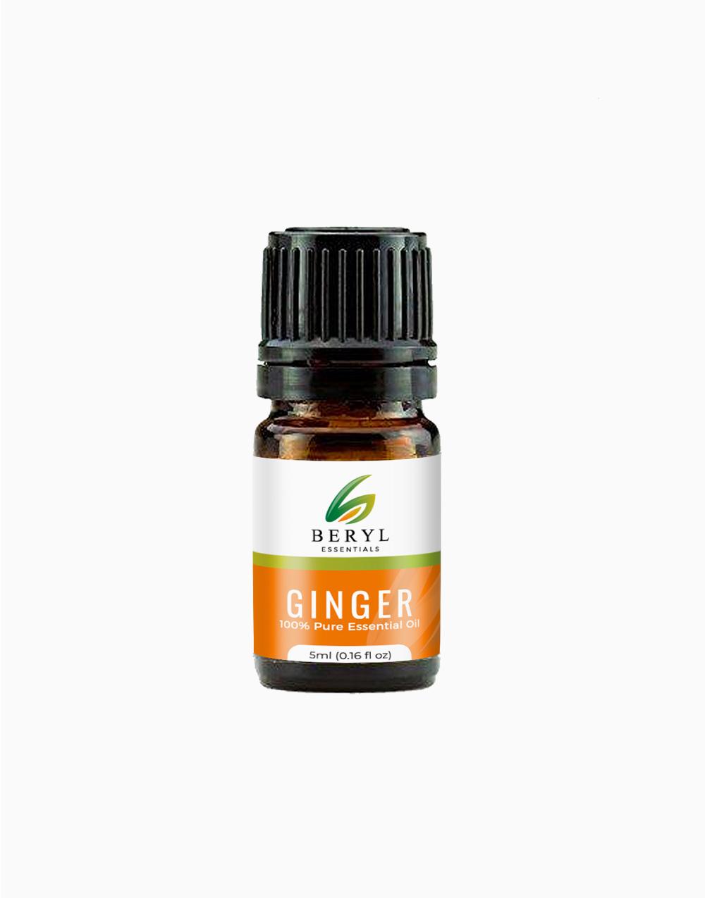 Ginger Essential Oil (5ml) by Beryl Essentials