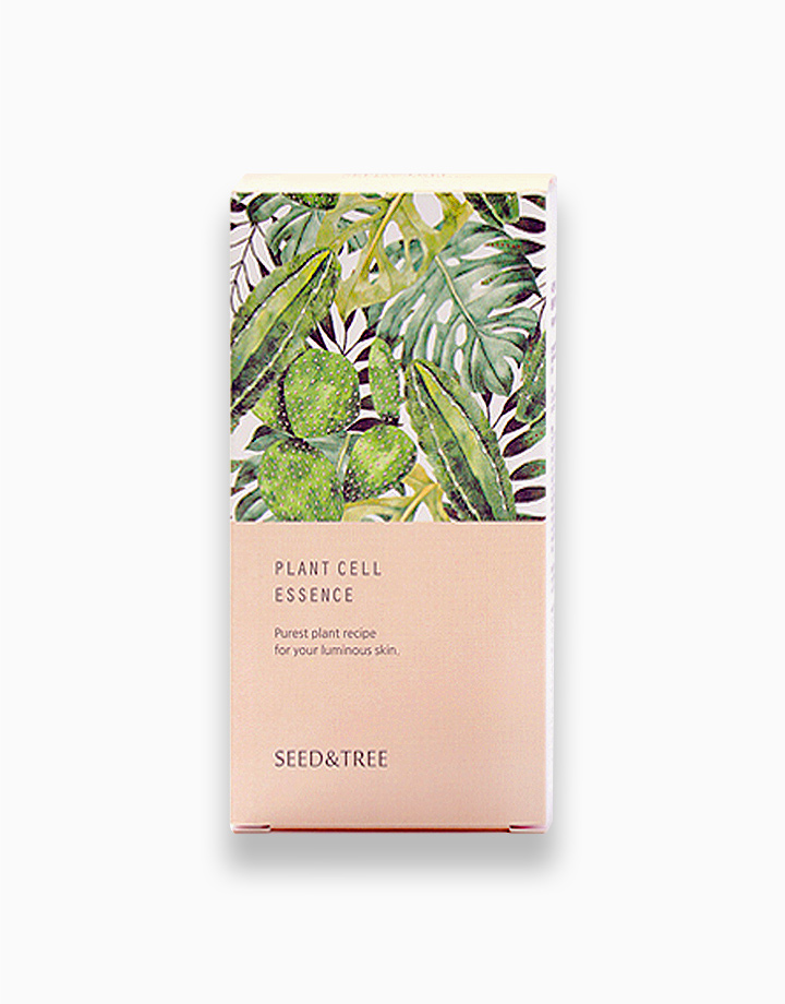 Plant Cell Essence – Ginseng Stem Cell, Antioxidant, Anti-Aging Serum by Seed & Tree