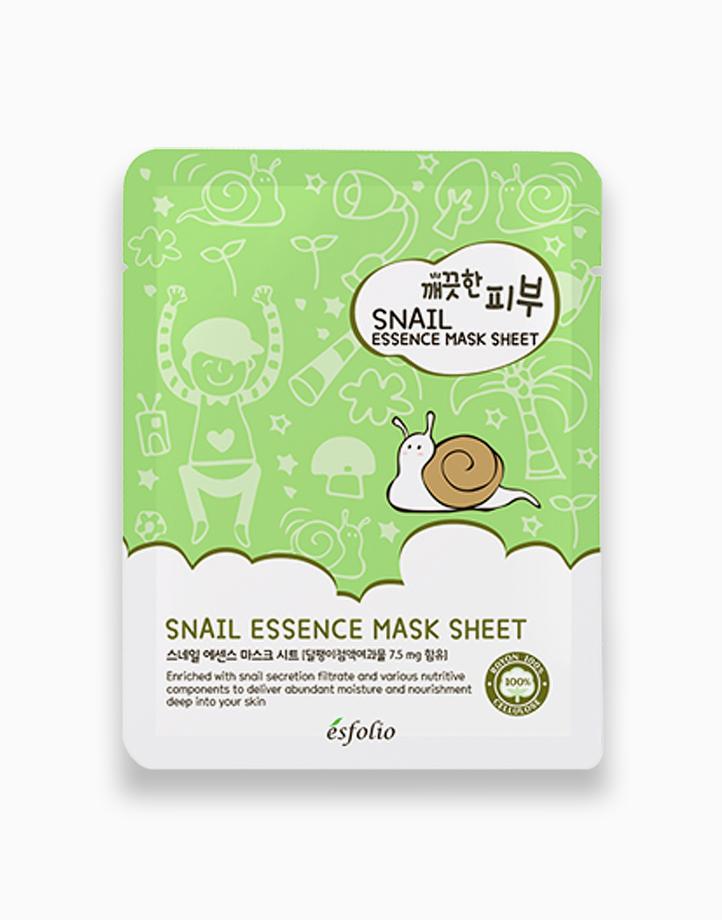 Pure Skin Snail Essence Mask Sheet by Esfolio