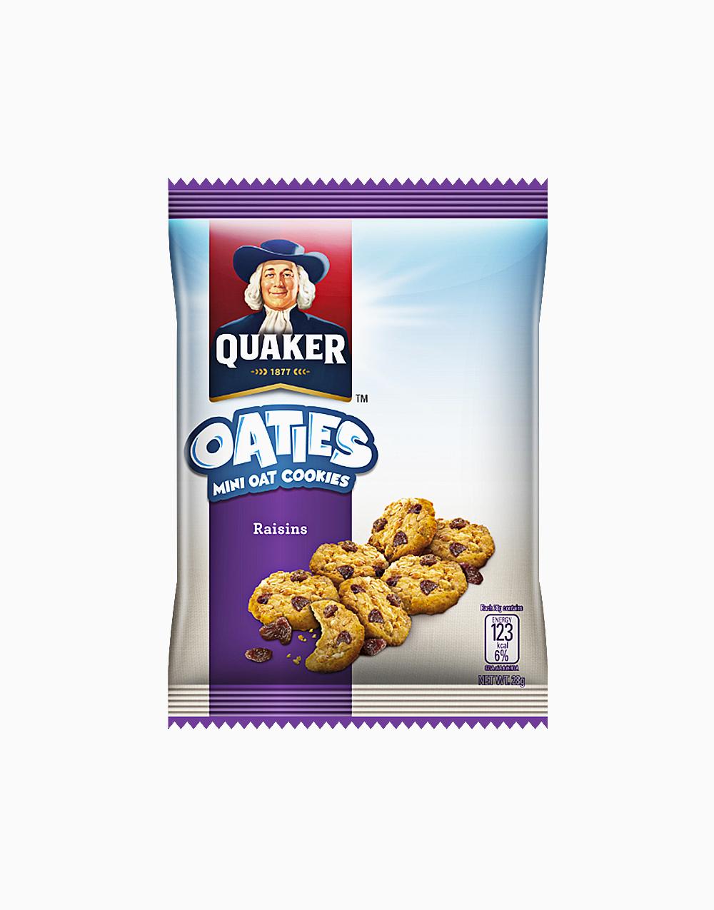 Oaties Raisins (28g) by Quaker