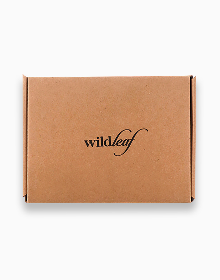 The Anti Acne Care Set by Wildleaf