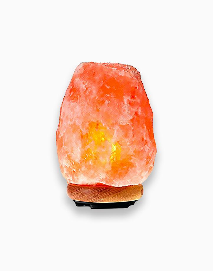 Himalayan Salt Lamp (2-3kg) by HIMA