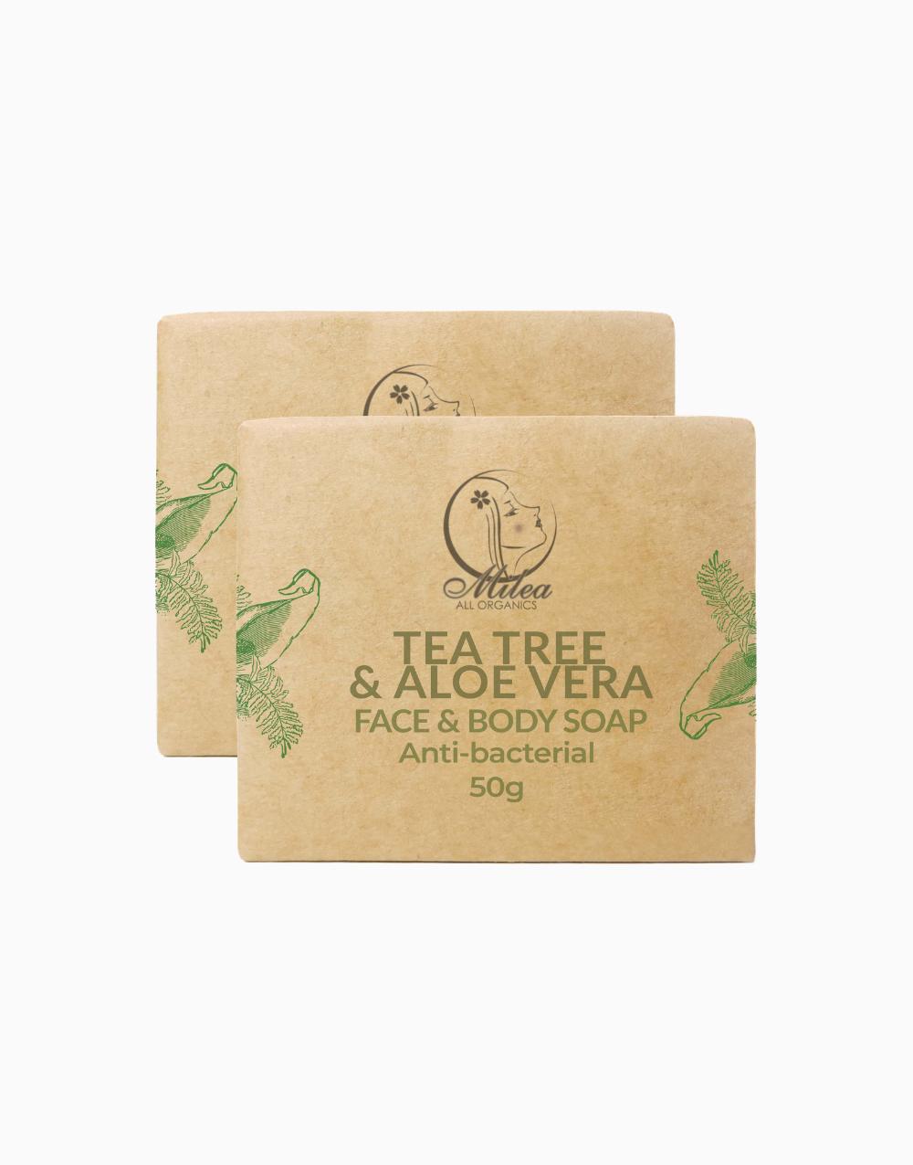 Tea Tree & Aloe Vera Soap (50g x 2 Pcs.) by Milea