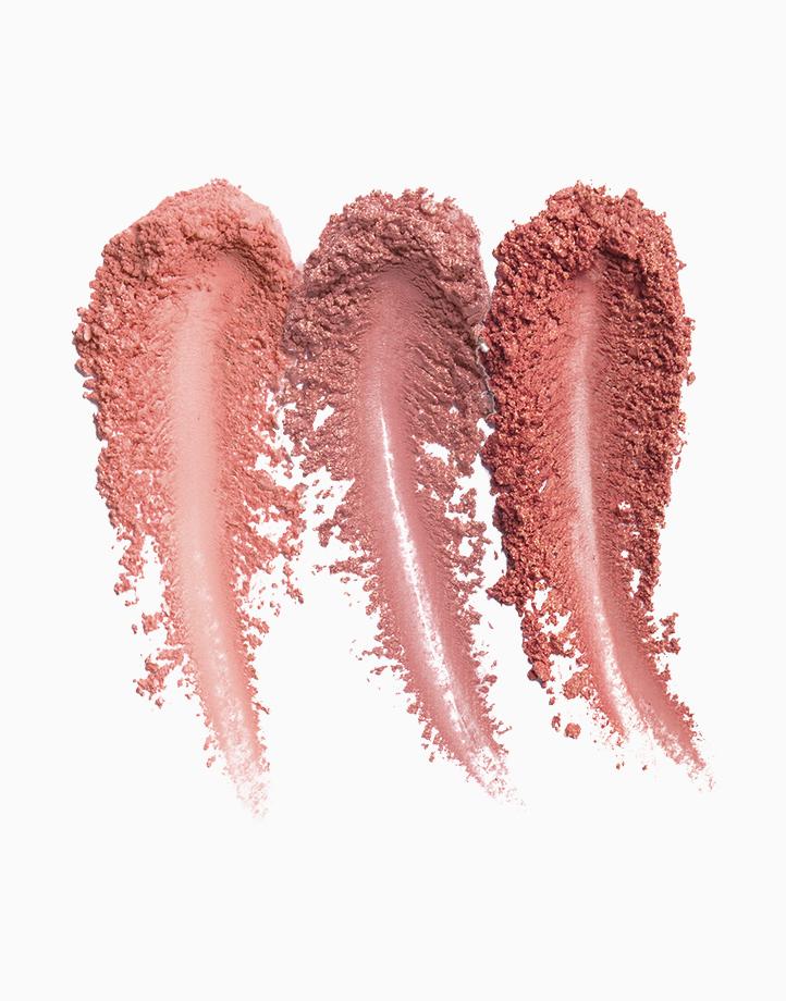 Rose Powder Blush Palette by Milani | Floral Fantasy