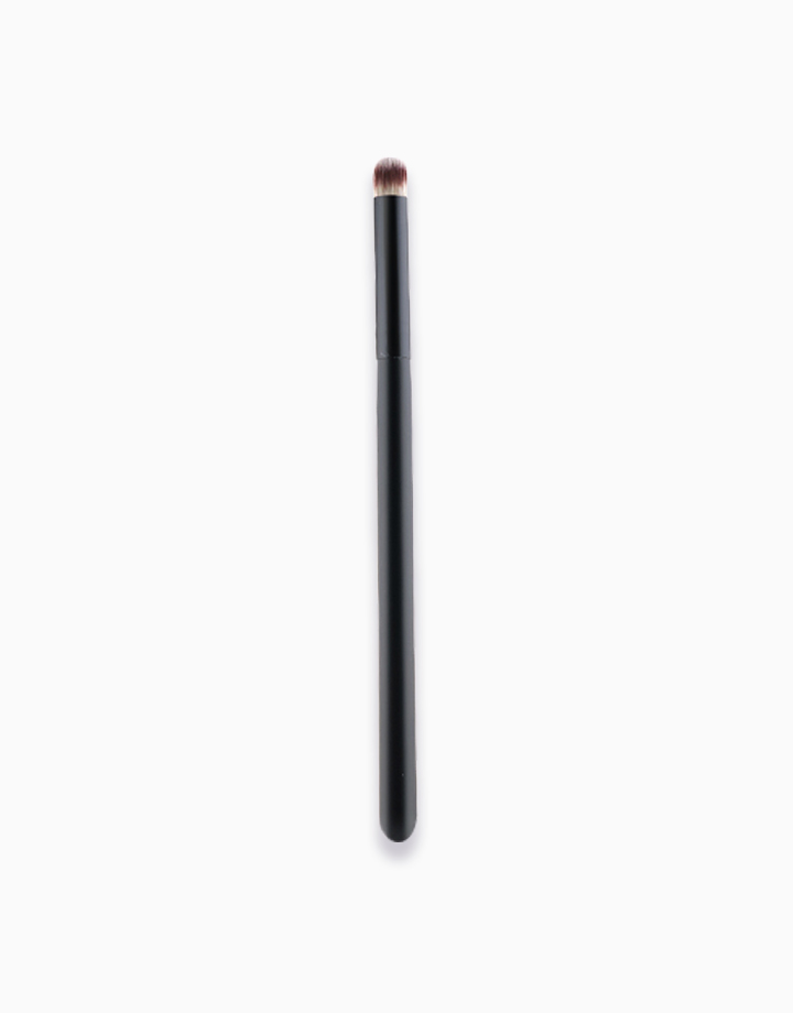 Pro Concealer Brush by PRO STUDIO Beauty Exclusives