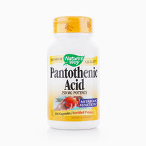 Panthotenic Acid (250mg, 100 Capsules) by Nature's Way