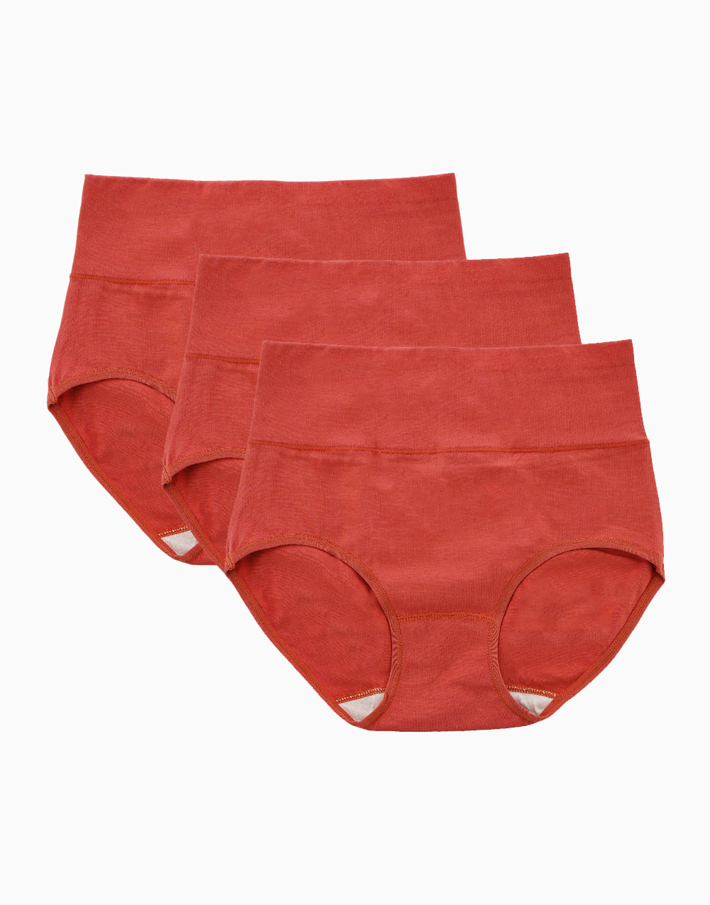 Belly Bikinis in Brick Red (Set of 3 High Rise Control Panties) by Jellyfit | Medium