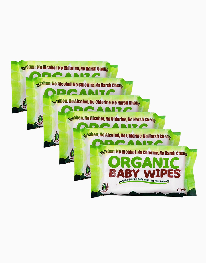 Organic Baby Wipes 80s (Pack of 6) by Organic Baby Wipes