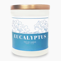 Eucalyptus Scented Soy Candle (10oz) by Honey and Wine