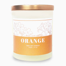 Orange Scented Soy Candle (10oz) by Honey and Wine