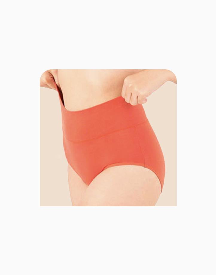 Belly Bikinis in Brick Red (Set of 3 High Rise Control Panties) by Jellyfit |