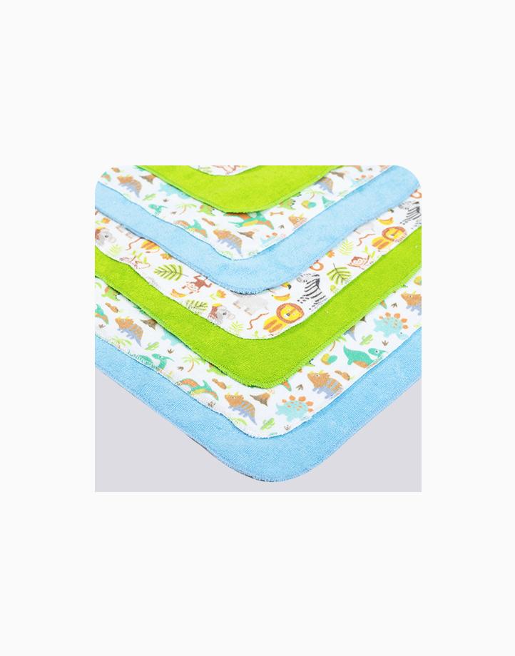 Wash Cloth 8's (6036) by BabyWorld PH | Blue / Green