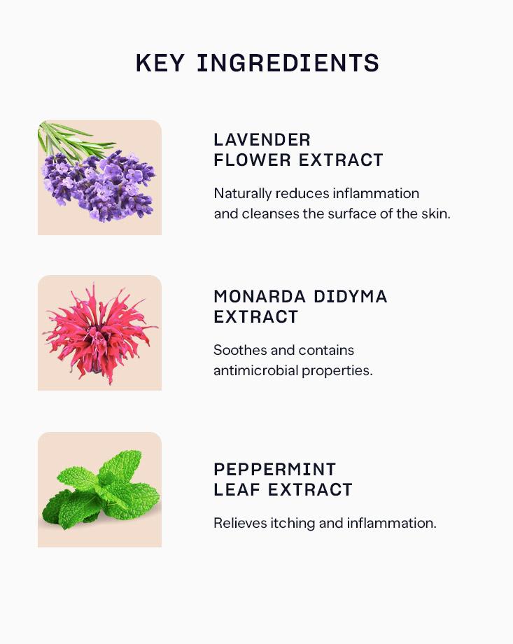 32732 pure skin herb essence sheet mask ingredients sir 1