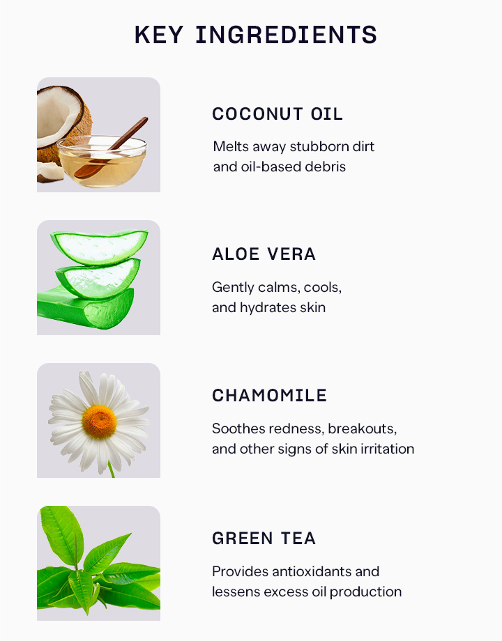 4 aloe herb face wash