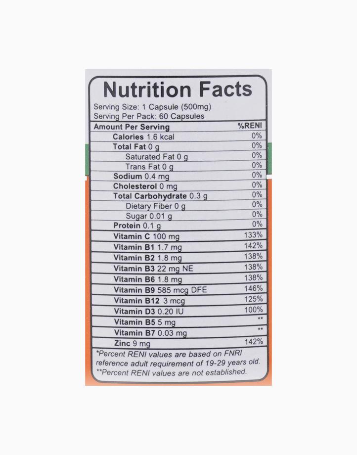 Daily Defense - Vitamin C, Vitamin B-Complex, Zinc (500mg, 60 Tablets) by Wellspring Life Science