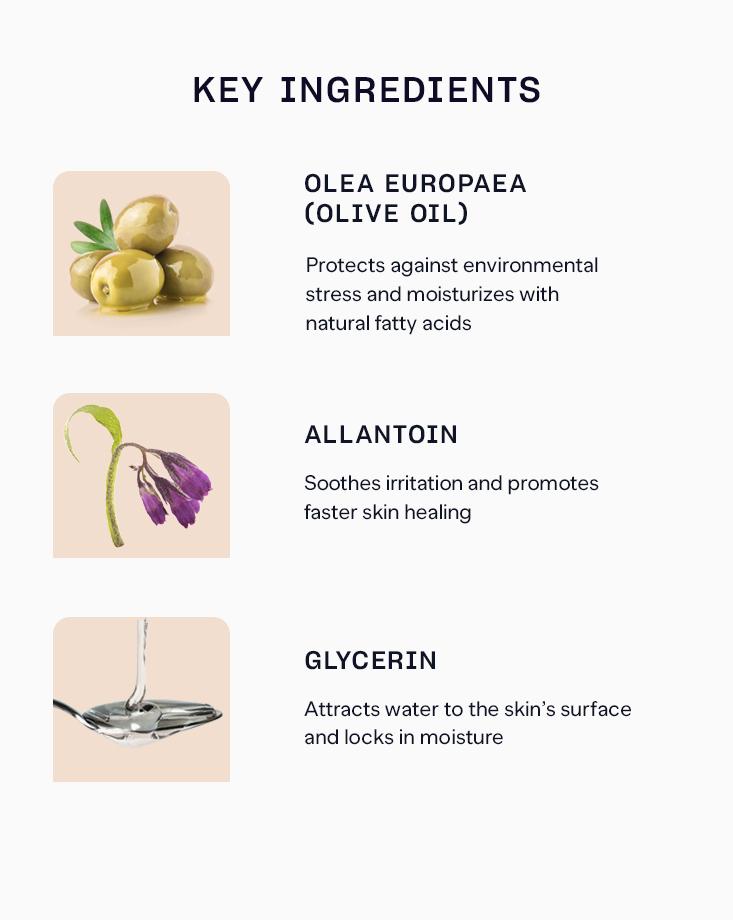 1 12981 olive sir