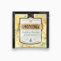 Twinings budding meadow camomile 3